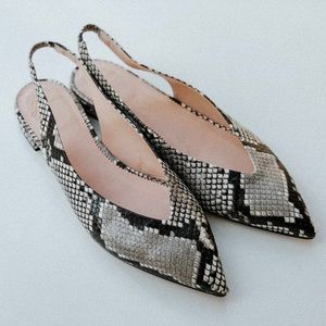J. Crew   Pointed-toe snakeskin flats sandals